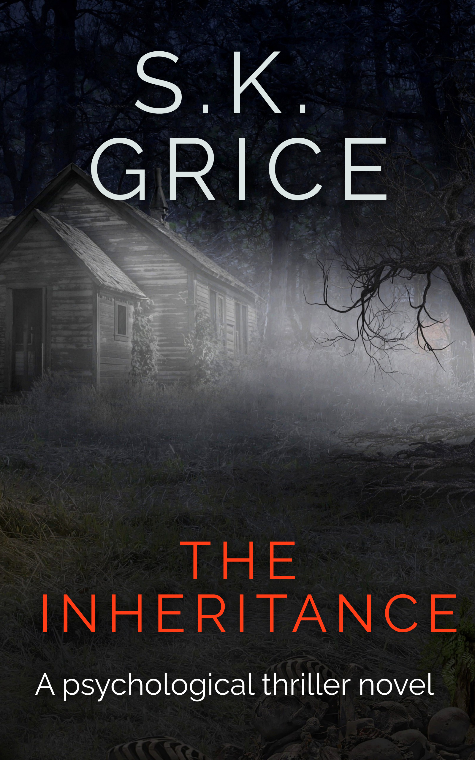 The Inheritance - Book Cover 1